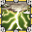 Le Gardien des Runes 6